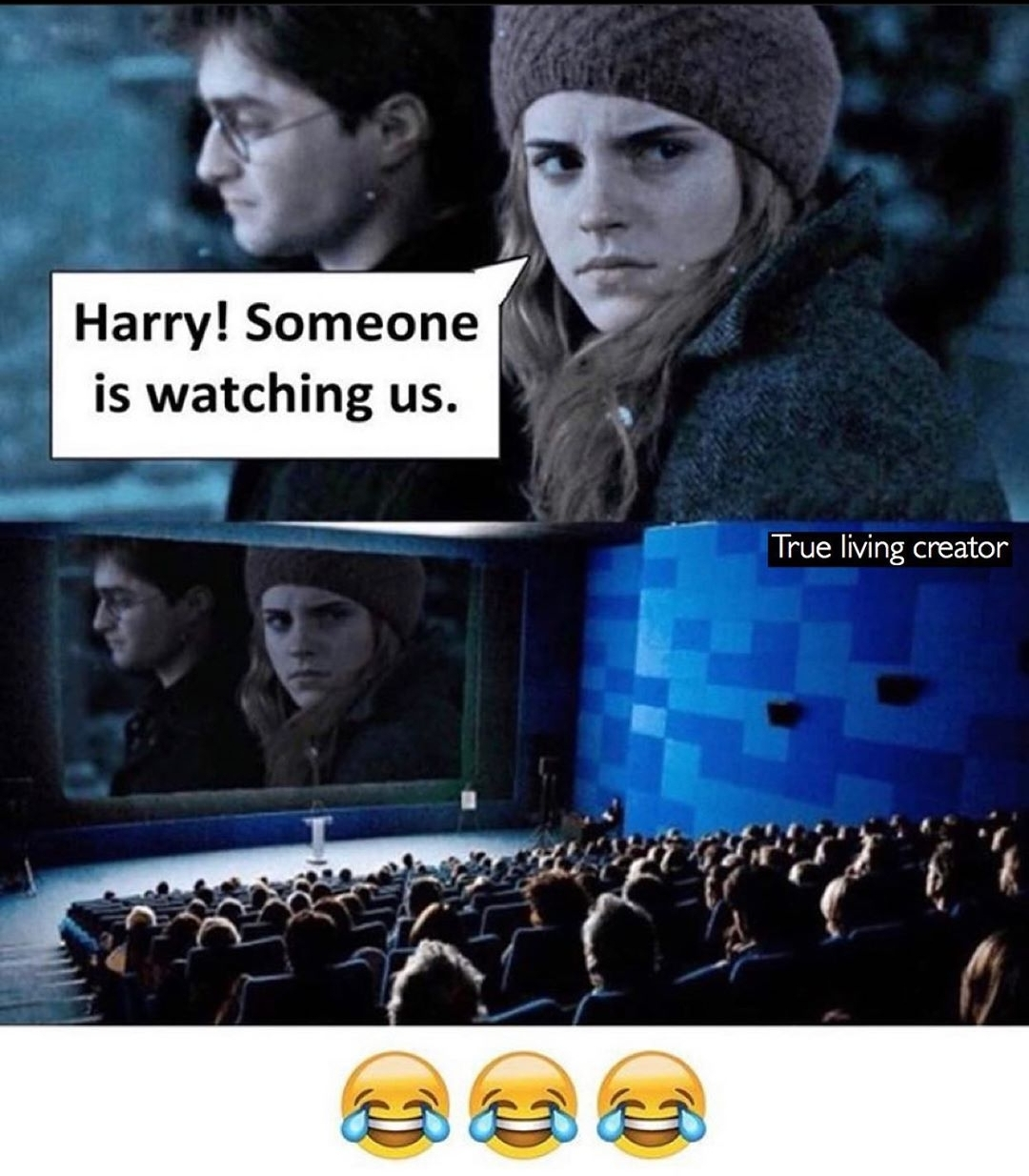 omg so hilarious 😂😂😂 they were watching them all the time 😂😂😂
